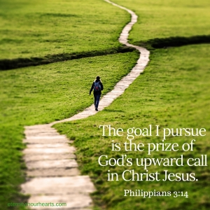 The goal I pursue is the prize of God's upward call in Christ Jesus. (2)